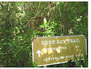Reef Bay Trail