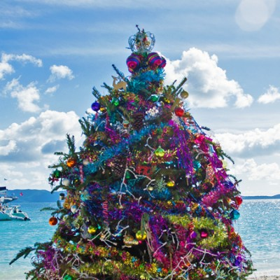 Christmas, island style. One Love Bar, White Bay BVI