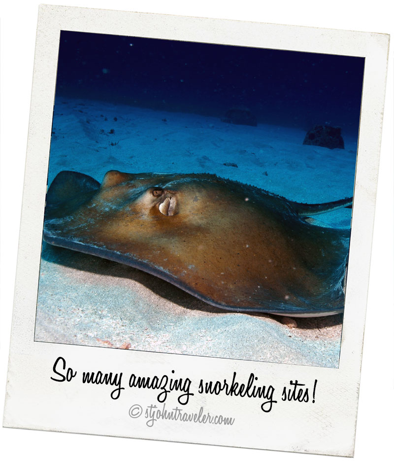 stjohn-excursions_amazing-snorkeling
